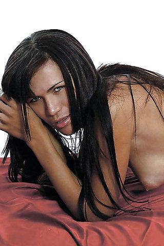 Sheila Gata Sexy