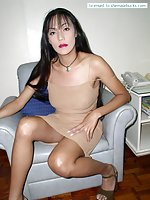 Hot ladyboy shows her body