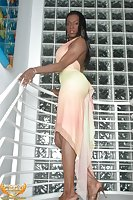 Ebony tgirl with big boobies
