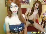 Couple 69 Tranny