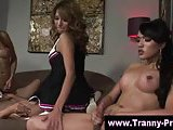 Tranny shemale blowjob and fucking at group act