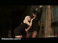 Bound big boobs tranny gets dick sucked by blonde