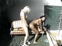 Black and white shemales sex outdoor