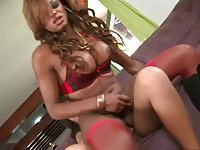 Big dicked Tgirls twosome