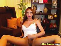 Shemale Hottie Eats her Own Cum