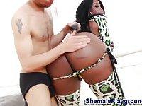 Big tits and ass black tranny
