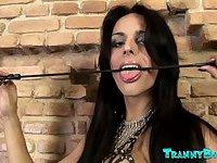 Terribly Nasty Tranny Domme Zena