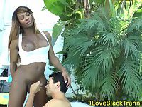 Black tranny gets ass toyed and cock tugged